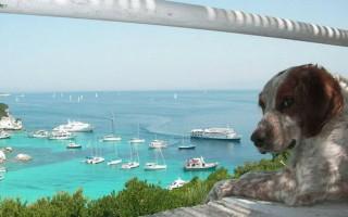 Μία ελληνική παραλία μεταξύ των δέκα καλύτερων στην Ευρώπη