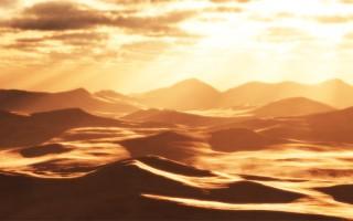 Πεντάχρονος επέζησε στην έρημο για 24 ώρες