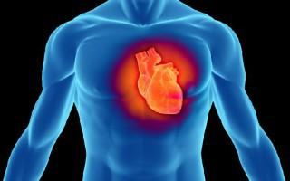 Η ταχυκαρδία σε ήρεμη φάση σημάδι πρόωρου θανάτου
