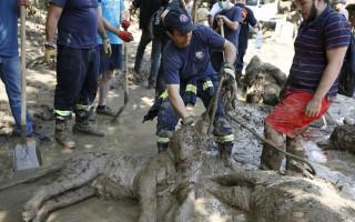 Τραγικό τέλος για τα ζώα στον ζωολογικό κήπο της Τιφλίδας