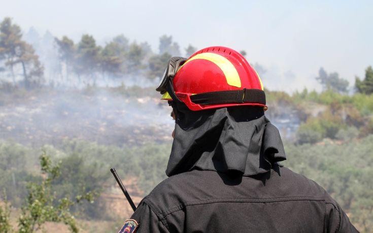 Υπό έλεγχο η πυρκαγιά στους Αρμένους Ρεθύμνου