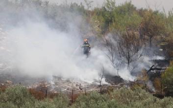Υπό έλεγχο οι δύο πυρκαγιές στην Κεφαλονιά