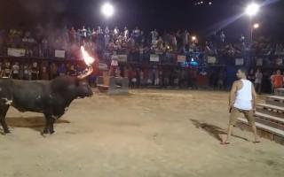 Μην προκαλείς ποτέ ένα ταύρο