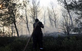 Πυρκαγιά ξέσπασε στην Κεφαλονιά