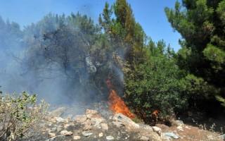 Πυρκαγιές στους Οθωνούς και στους Δουκάδες Κέρκυρας