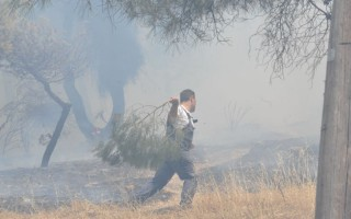 Εθελοντικές οργανώσεις στη μάχη για την αντιμετώπιση των πυρκαγιών