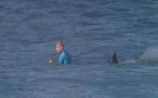 Επίθεση από καρχαρία δέχθηκε Αυστραλός σέρφερ
