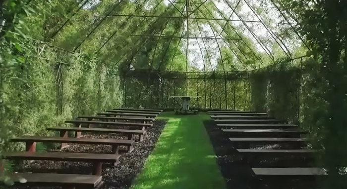 living_tree_church_06