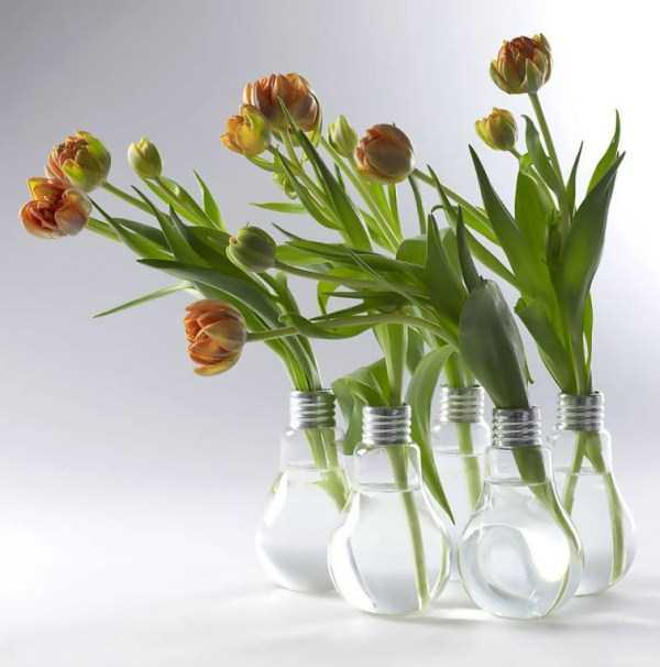 old-reused-lightbulbs-13