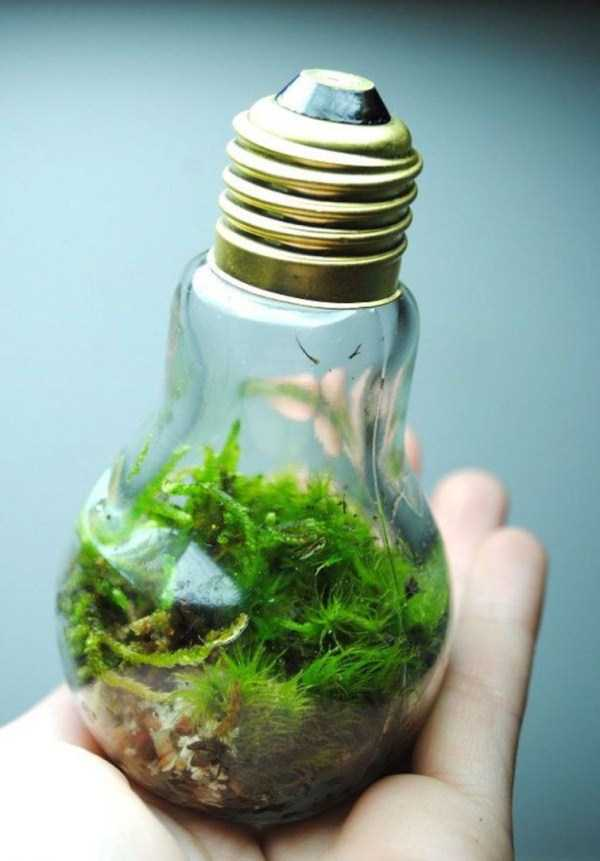 old-reused-lightbulbs-7