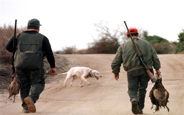 Παραλίγο τραγωδία σε κυνήγι για αγριογούρουνο