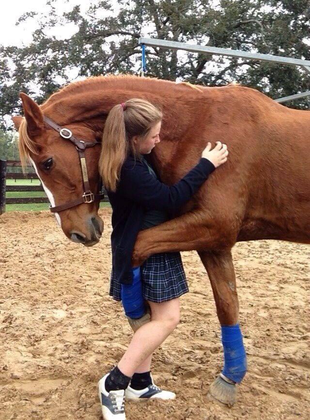 Αγκαλιά με το άλογο   Newsbeast