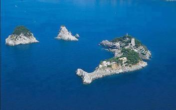 Το νησί δελφίνι!