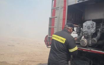 Δεν κινδυνεύουν σπίτια από την πυρκαγιά στον Ωρωπό
