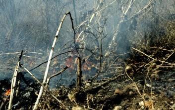 Στον εισαγγελέα 47χρονος για τη φωτιά στην Πάλαιρο