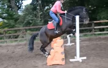 Άλογα και αναποδιές