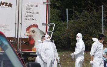 Πιθανότατα Σύροι οι 71 νεκροί στην Αυστρία