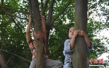 Η δοκιμασία του δέντρου για τα αγόρια της Κίνας