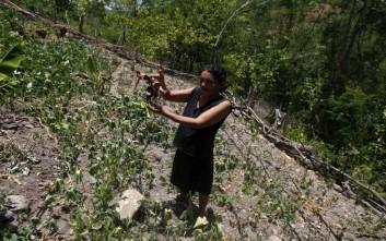 Ο λιμός απειλεί ένα εκατομμύριο ανθρώπους στη Γουατεμάλα