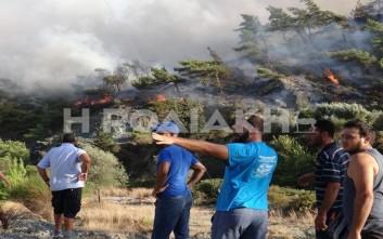 Κάηκαν 100 στρέμματα δάσους στη Ρόδο