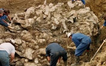 Προϊστορικός ομαδικός τάφος 7.000 ετών στη Γερμανία