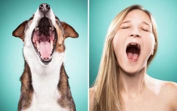 Σκύλοι και ιδιοκτήτες στην ίδια πόζα
