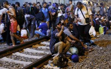 Έκκληση 447 επιστημόνων για αλληλεγγύη στους πρόσφυγες