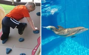 Το αγόρι χωρίς πόδια θέλει να συναντήσει το δελφίνι χωρίς ουρά