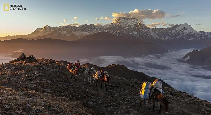 «Το τοπίο των Ιμαλαΐων μου παίρνει το μυαλό», περιγράφει ο φωτογράφος  Jonathan Abdipranoto που αποτύπωσε στο φακό του το βουνό Dhaulagiri στην ανατολή του ηλίου.
