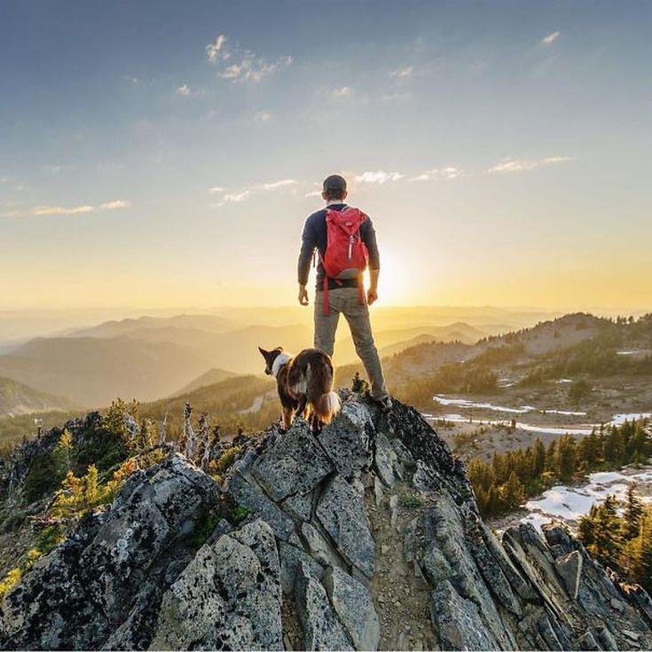 camping-with-dog-ryan-carter-114__605