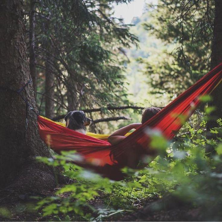 camping-with-dog-ryan-carter-48__605