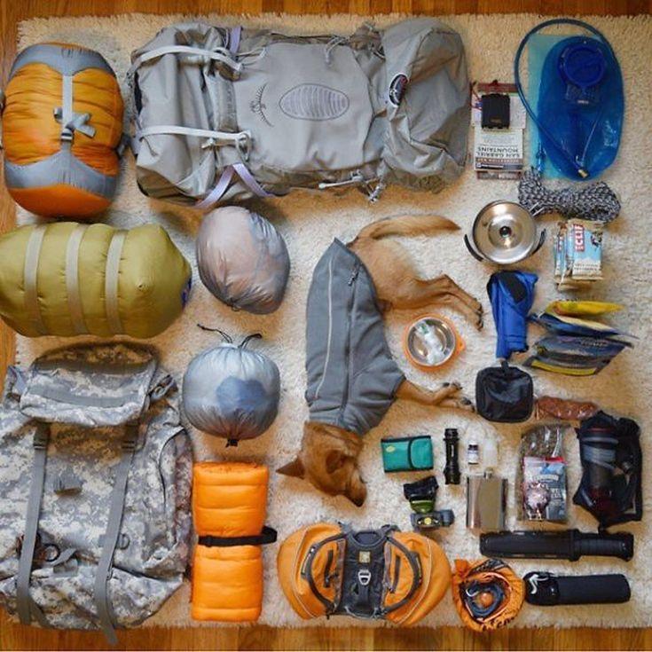 camping-with-dog-ryan-carter-60__605