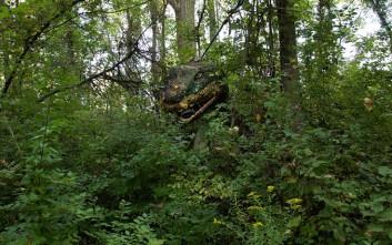 Το ανατριχιαστικό πραγματικό Jurassic Park