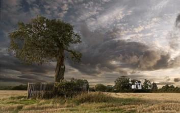 Δέντρα με πλούσιο παρελθόν και μεγάλη ιστορία