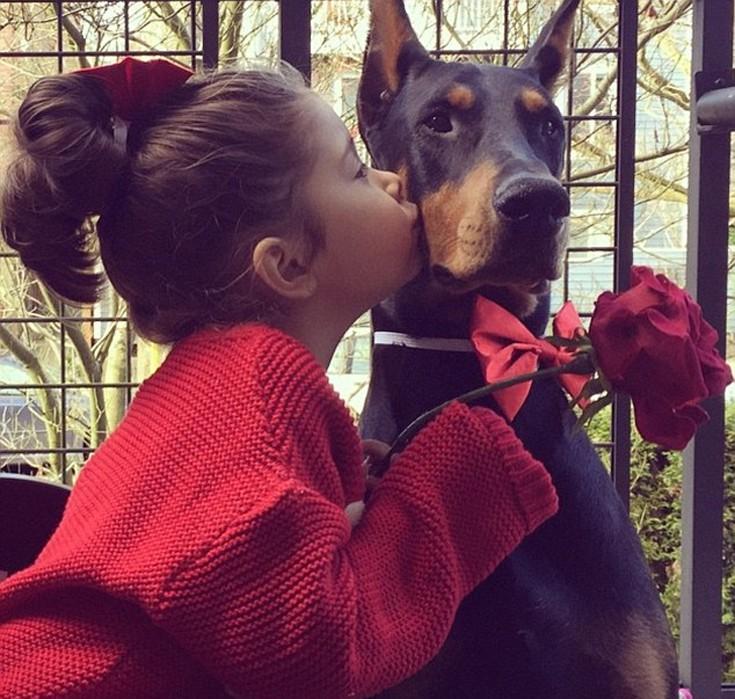 girldog4