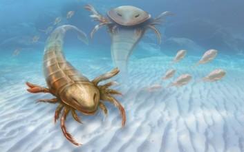 Ανακαλύφθηκε απολίθωμα πλάσματος που έμοιαζε με γιγάντιο σκορπιό