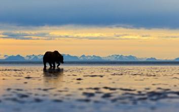 Ρεκόρ ζέστης στην Αλάσκα το 2019