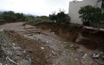 Νικολάου: Να κηρυχθεί η Δυτική Αχαΐα σε κατάσταση έκτακτης ανάγκης