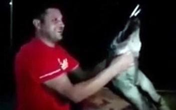 Αποτρόπαιος βασανισμός και εξευτελισμός λύκου στην ΠΓΔΜ