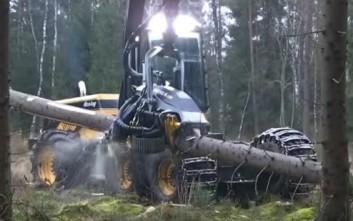 Εκπληκτική μηχανή πάει σε άλλο επίπεδο το κόψιμο των δέντρων