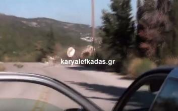 Βίντεο από τις καταστροφές που άφησε πίσω του ο μεγάλος σεισμός στη Λευκάδα