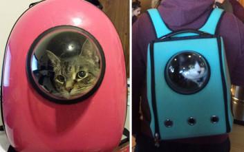 Μετέφερε τη γάτα σου σα να είναι... αστροναύτης!