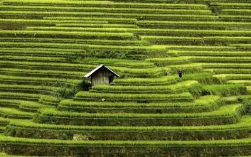 Εντυπωσιακές και διαφορετικές φωτογραφίες από το Βιετνάμ