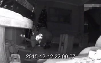 Έκλεψαν τα δώρα από το Χριστουγεννιάτικο δέντρο