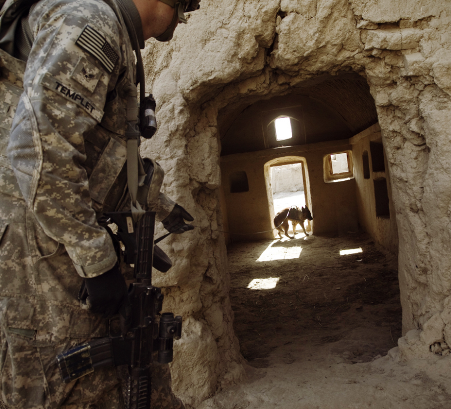 powerful-moments-of-dogs-at-war-31