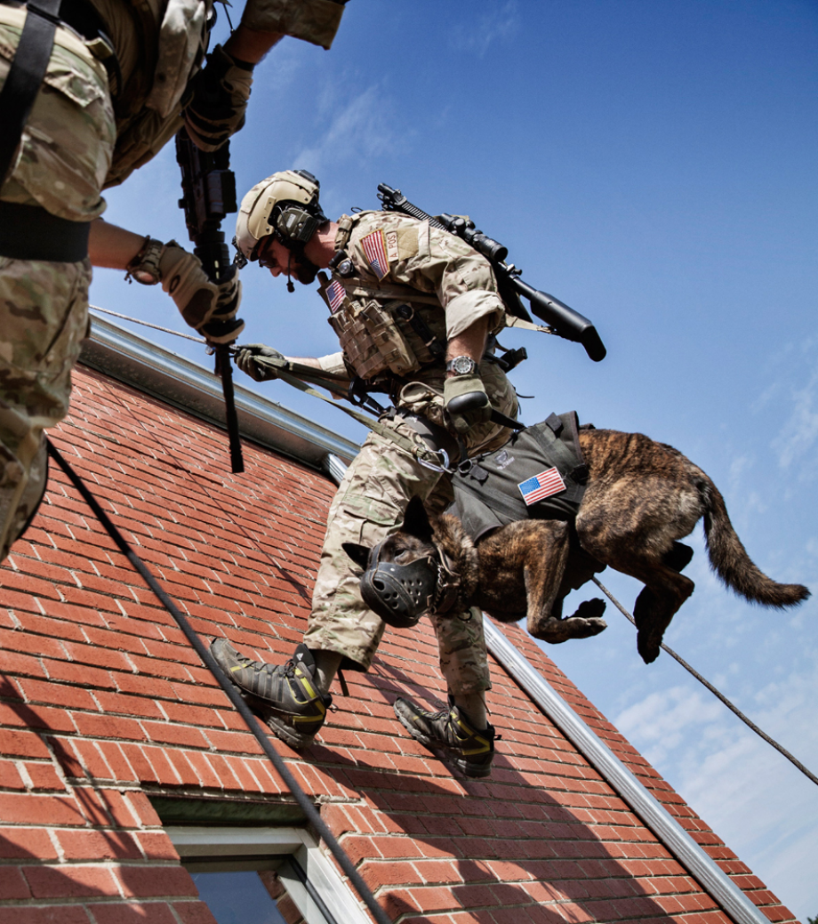 powerful-moments-of-dogs-at-war-55