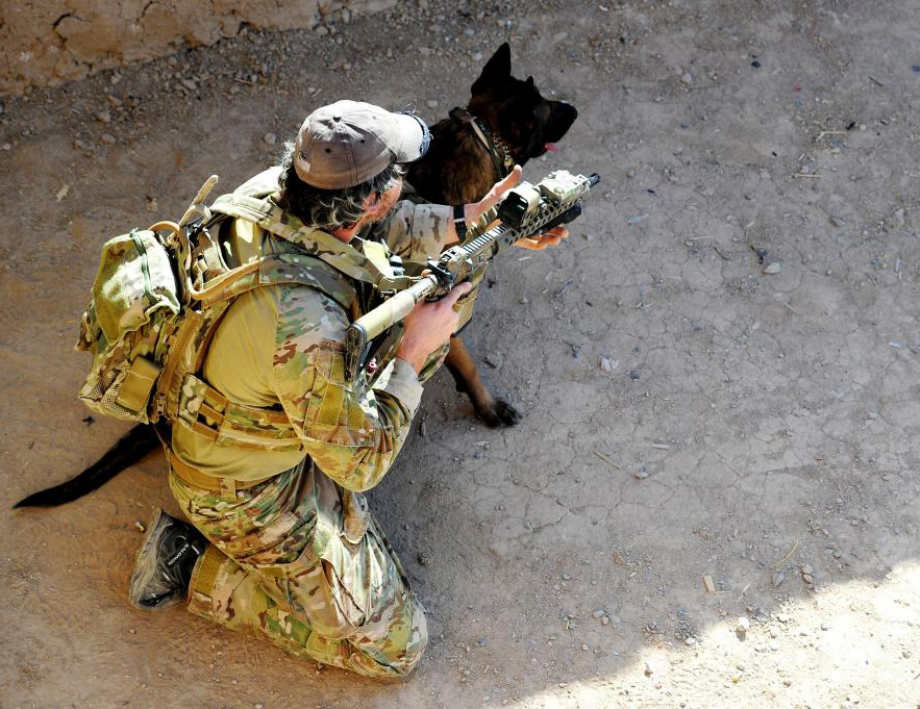 powerful-moments-of-dogs-at-war-78