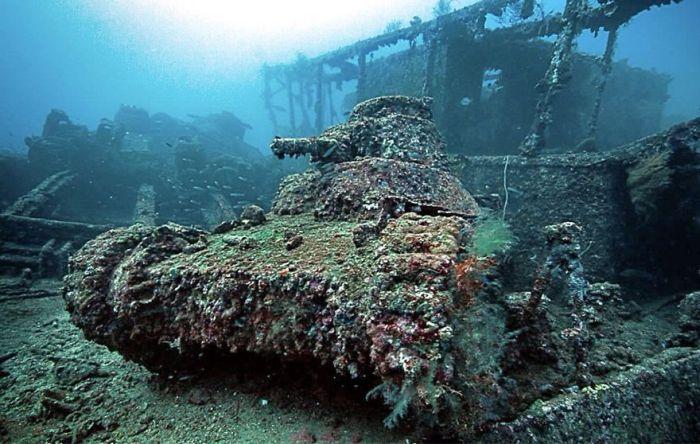 tanks_taken_nature_01