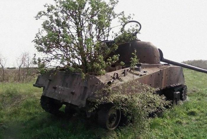 tanks_taken_nature_07