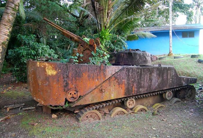 tanks_taken_nature_10